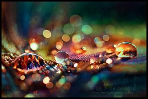 Rainbow Fairy Dust by Lilyas