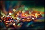 Rainbow Fairy Dust