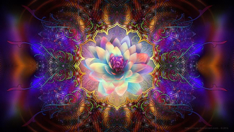 Magic Portal by Lilyas