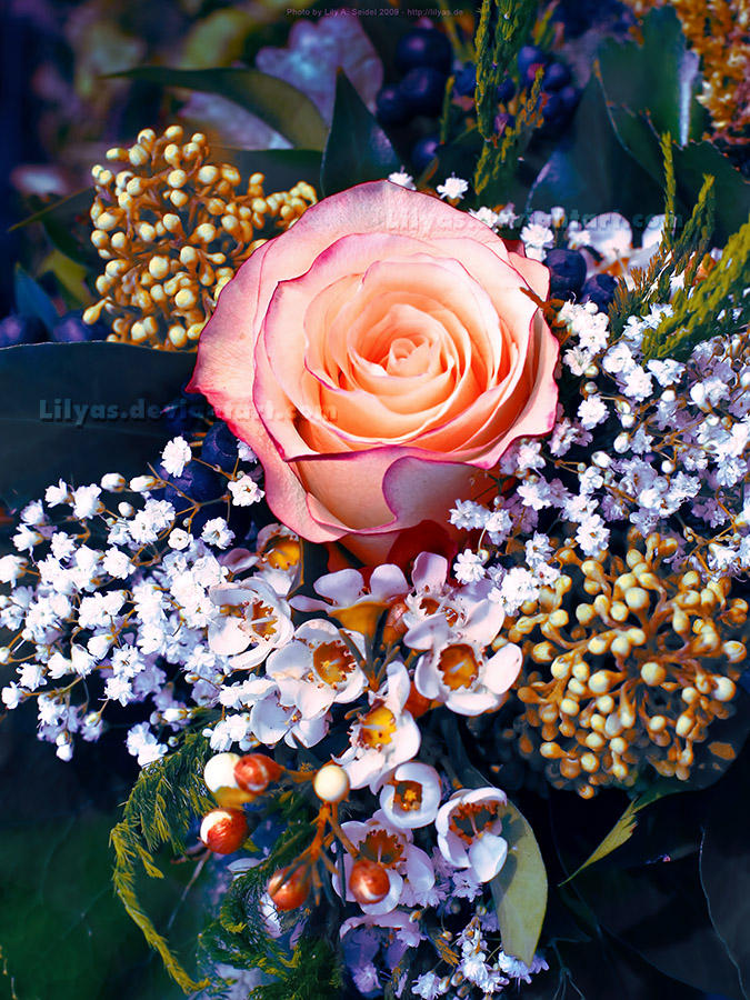 Rose Bouquet - Unlimited STOCK