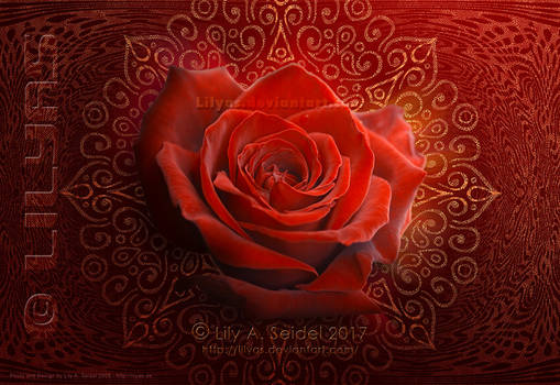 Magical Rose Design - Unlimited STOCK