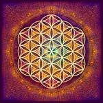 Romantic Flower of Life by Lilyas