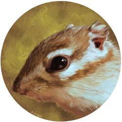 Chipmunk portrait by pollomostro