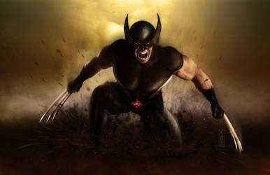 Wolverine by Harben-Pictures