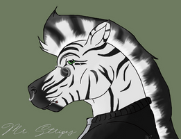 Commission: Mr. Stripes