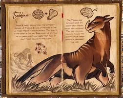 XIUNUS - Tsabhua by preimpression
