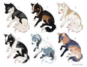 Canine Designs for Sale (OPEN)