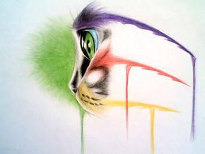 Meow by Ankredible