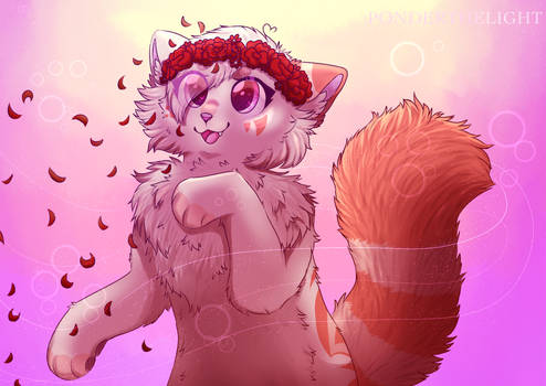 ~ Petals in  the wind ~