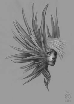 Wingface