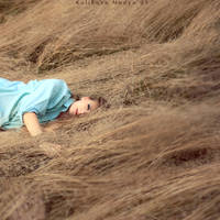 Wheaten hair by NadyaBird
