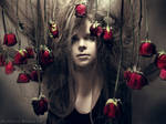 Red roses2 by NadyaBird