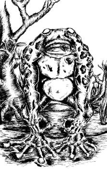 Zombie Toad-Man
