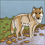 Pixel Wolf YOU STEAL YOU DIE by Jiel