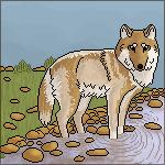 Pixel Wolf YOU STEAL YOU DIE by Jiel