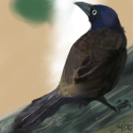 Blackbird tag for SALE - $5/600points by Jiel