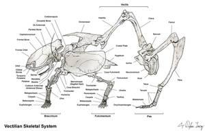 Alien Bones by Onironus