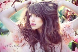 fairywood by SabrinaCichy