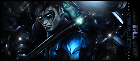 Nightwing by cooltraxx