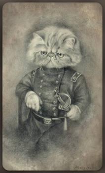Colonel Puss