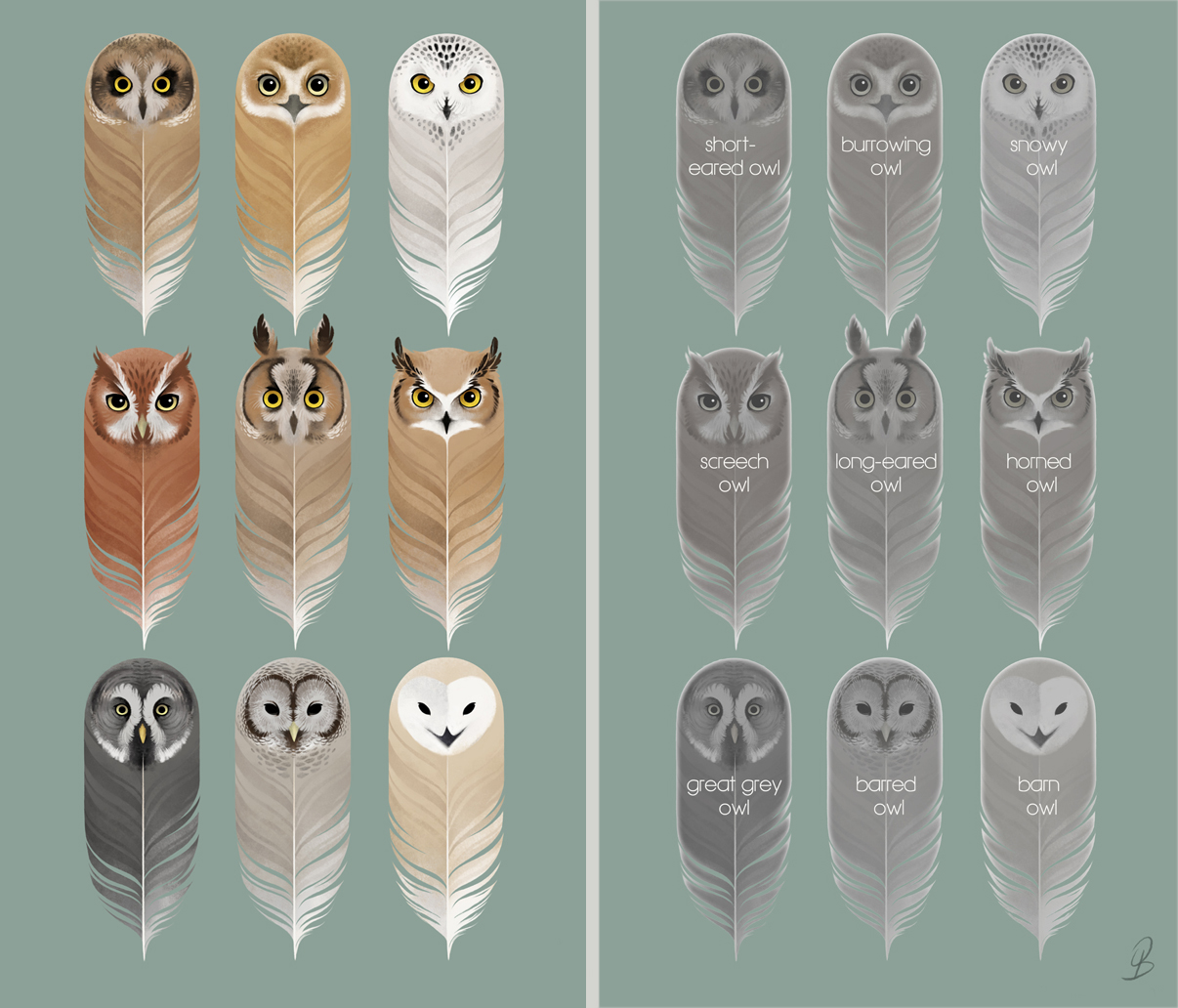 Birds of a Feather by Sash-kash on DeviantArt