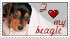 Beagle Stamp I by seremela05