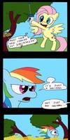 Rainbow Dash finds a pet! by tifu