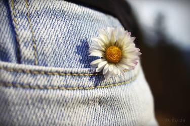 Flower in my pocket