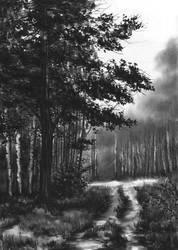 landscape- second approach by Kosa666