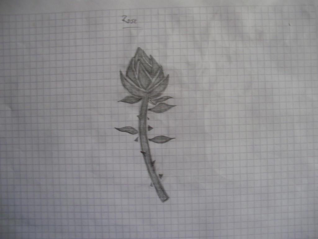 Galería de Urucita - Página 2 A_rose_by_urucita-d85ef4a
