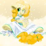Pear Bride
