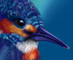 Kingfisher, Work in Progress