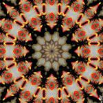 Black Star by surrealistguitarist