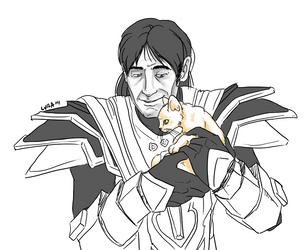Kitten by halmtier