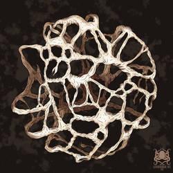 Nebulous Boneweb