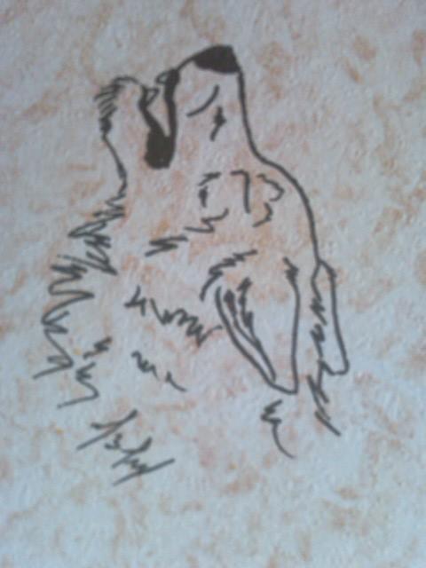 http://fc04.deviantart.net/fs71/f/2011/124/a/4/howl_by_worldshade-d3fkdgb.jpg