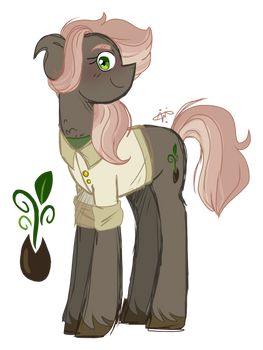Fluttershy x Caballeron adopt- CLOSED