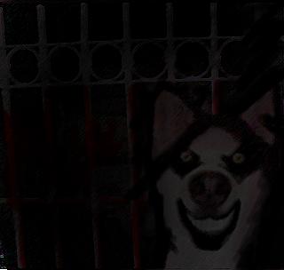 smile dog by leonarockera