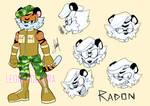 Radon Reference