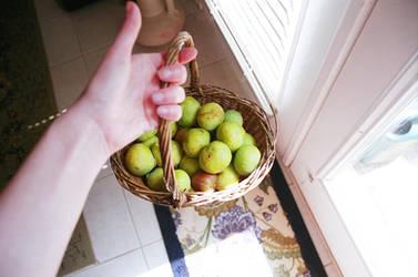 Basket of Fresh Figs by VeggieSandwiches