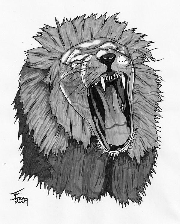 Angry Lion Face 2 by Jeherrin on DeviantArt