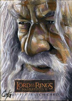 LOTR MPII: Gandalf by gattadonna