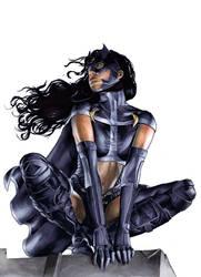 Huntress- original by gattadonna