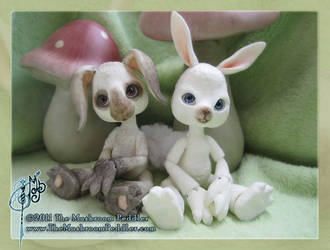 Fluff the Bunny and a Friend by TheMushroomPeddler