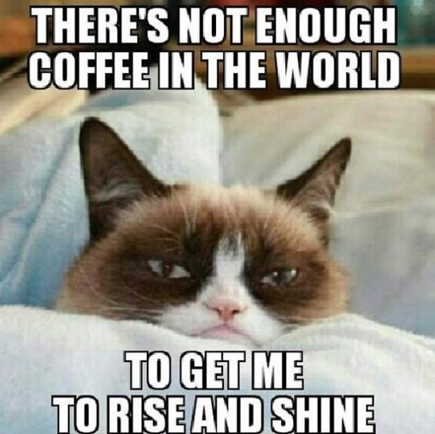 grumpy_cat_meme_7_by_roninhunt0987 d8ecmau grumpy cat meme 7 by roninhunt0987 on deviantart