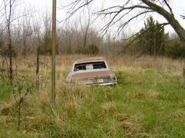 Rural Decay 1