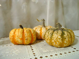 Colorful Pumpkins by DarkMaiden-Stock