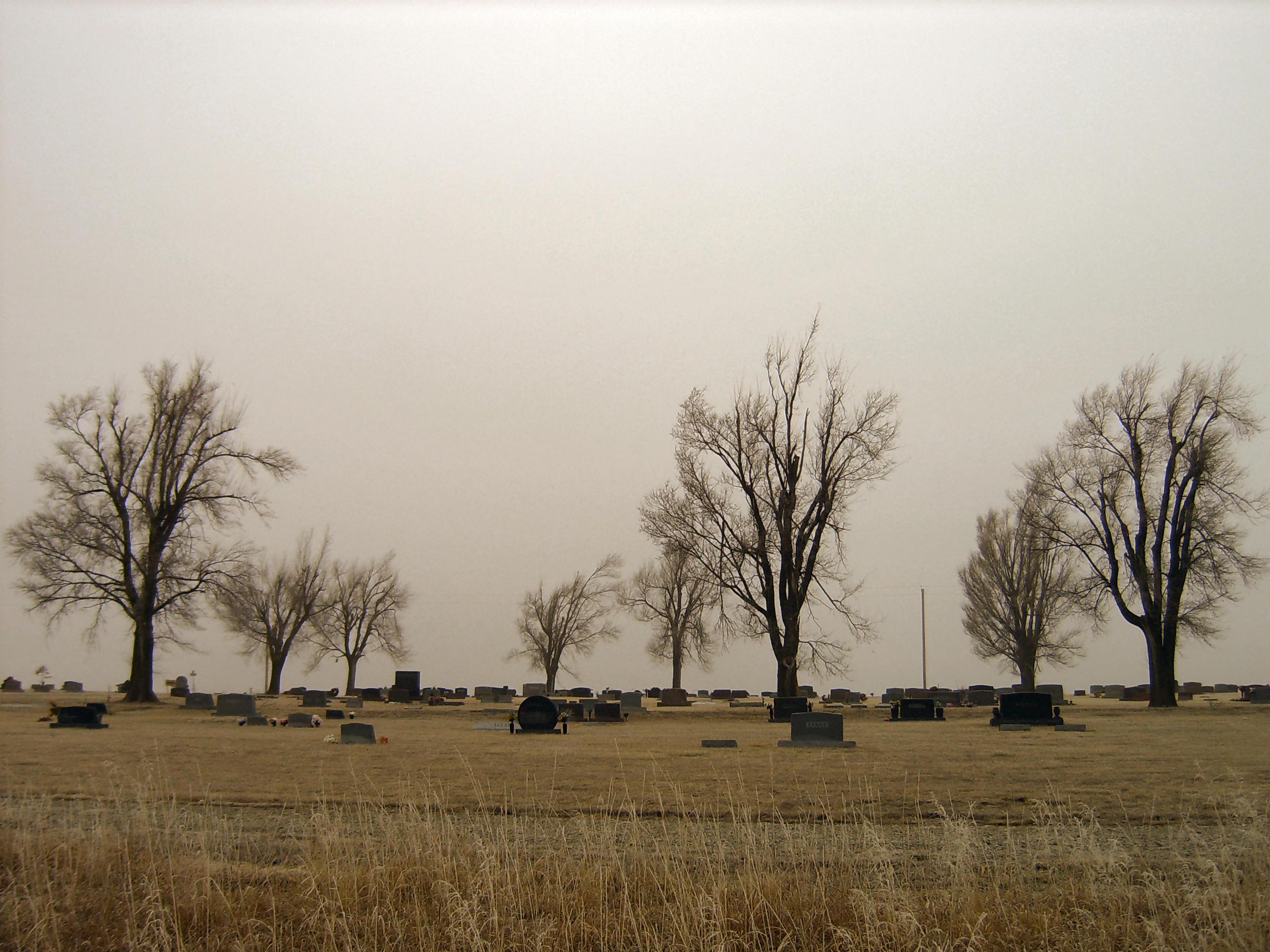 Trees n Graves 2 by DarkMaiden-Stock on deviantART