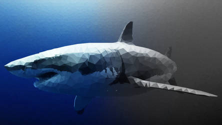 Great-White-Shark by Box-of-Toys