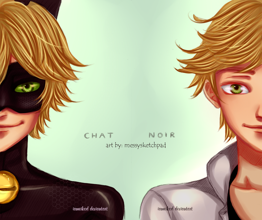 Image Result For Miraculous Ladybug Adrien
